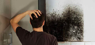 Residential Mold Damage